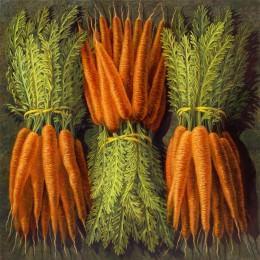 Bottes de carottes (4)