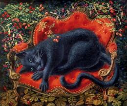 Le canapé au chat